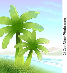 banana tree - young banana tree isolated on sky background