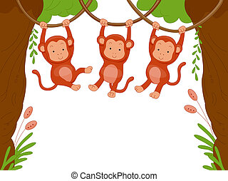 Monkeys - Three Monkeys Swinging Among Vines for Background