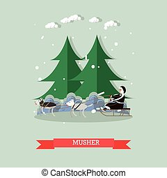 Vector illustration of musher riding dog sled in flat style...