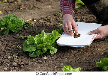 Farmer inspecting products in garden - Farmer with notebook...