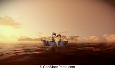 Swans on water with tropical island on the background, morning mist