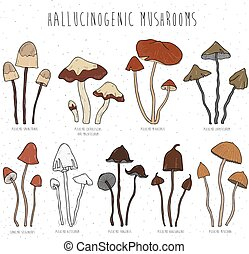 Set hallucinogenic mushrooms color. - Collection isolated...