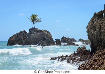 Mini island with a single coconut tree surrounded by sea...