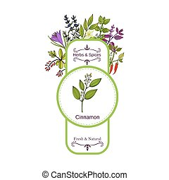 Vintage herbs and spices label collection. Cinnamon hand...
