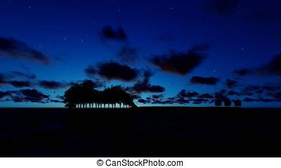 Guitar Trees over Ocean, Timelapse Sunrise, Musical Notes flying