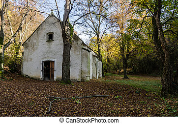 old abandoned church in forest