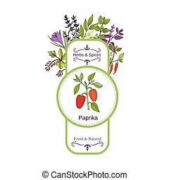 Vintage herbs and spices label collection. Paprika hand...