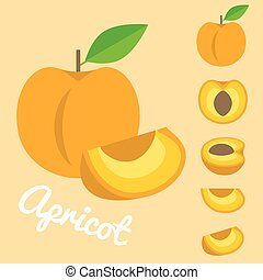 Vector Apricot
