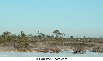 Researchers in national reserve. Clean and frosty daytime....