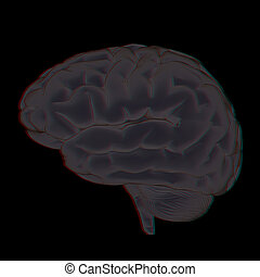 3D illustration of human brain. Anaglyph. View with red/cyan glasses to see in 3D.
