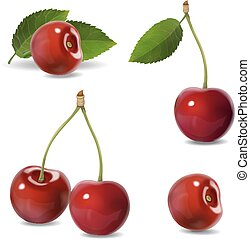 Cherry realistic fruit vector icons set. isolated illustration