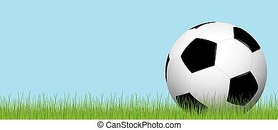 Football lying on the grass - black and white soccer ball...