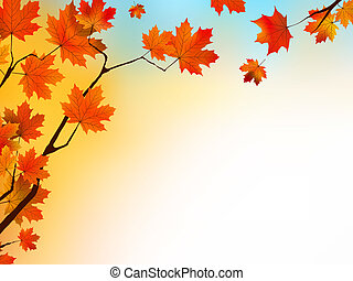 Autumn background with maple leaves and blue sky.