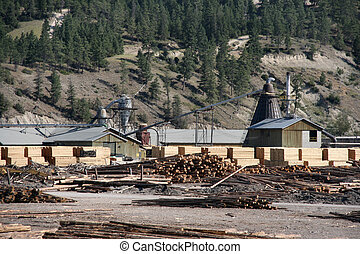 Lumber mill - Sawmill or lumber mill - wood processing plant...