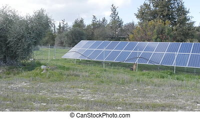 Solar farm panels green energy concept - Solar farm panels...
