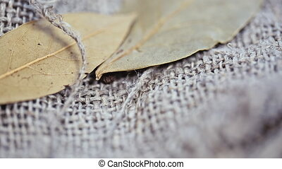 natural spices on a linen background.