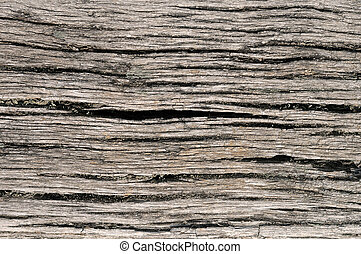 Old cracked wood texture - Background of cracked old...