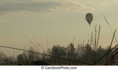 Three balloons hovering over a field.