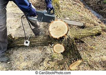 The electric chain saw in a man's hands. - The electric...