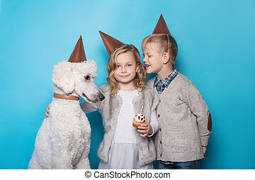bello, Ragazzo, poco, compleanno, amicizia, famiglia, sopra, blu, cane,  studio, fondo, ritratto, ragazza, celebrare, bello