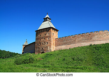 aging fortress amongst green herb
