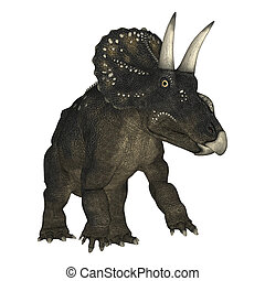 3D Rendering Dinosaur Diceratops on White - 3D rendering of...