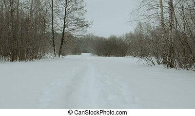 Winter footpath in the park. Used professional gimbal...