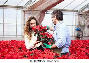 Couple with Poinsettias at florists