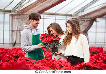 florist working at gardening store