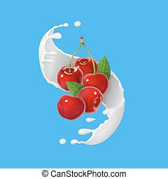 Red cherry fruits and milky splash. - Red cherries fruits...