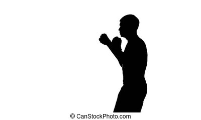 Silhouette of a boxer in training on a white background