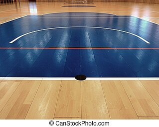 Basketball court inside. White lines and blue playfield in...