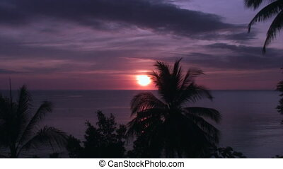 Sunset on a background of the beautiful sea and palm trees in Philippines.