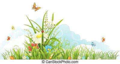 Vector summer banner - Vector green grass, flowers and...