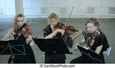 Close-up. Three violinists of musician playing violin.