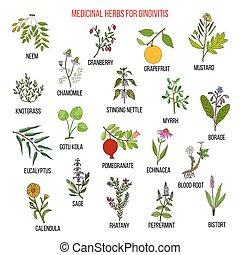 Best herbal remedies for gingivitis. Hand drawn vector set...