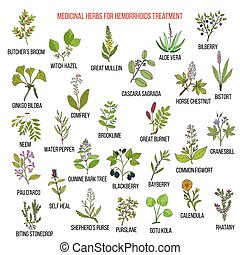 Best herbal remedies for hemorrhoids. Hand drawn vector set...