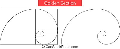 golden section vector - Illustration of double golden spiral...