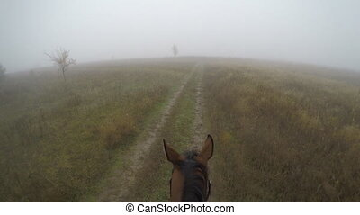 First person view of riding a horse. Point of view of rider...