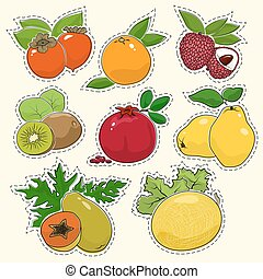 Set of Tropical Fruit Stickers, Pins or Patches, Persimmon...