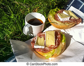 Picnic with coffee and sandwiches outdoors on a blanket in...