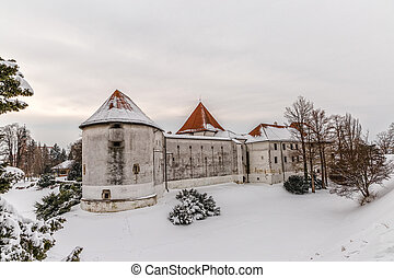 Varazdin Old Town and Castle - Varazdin Castle and Old Town...