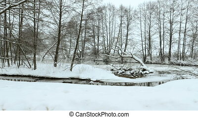 Winter park. Used professional gimbal stabilazer - River in...