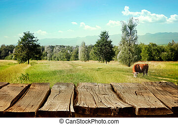 Wooden table with spring background