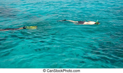 Snorkelling in the clear turquoise water