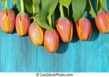 A bunch of orange Tulips