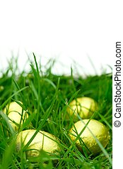 Easter egg hunt - Easter eggs in grass with a white...