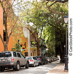 Old San Juan Tree Lined Street - Cars are lined up down a...