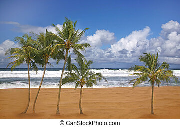 Beautiful Travel Destination Beach Image - Tropical Palm...
