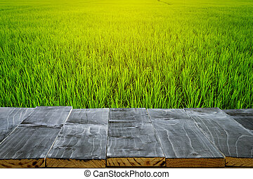 Empty wood table top for product display montage and field rice and sunlight.